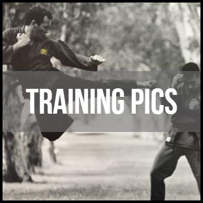 Bushidokai-Gallery-Blocks-Training-Pics