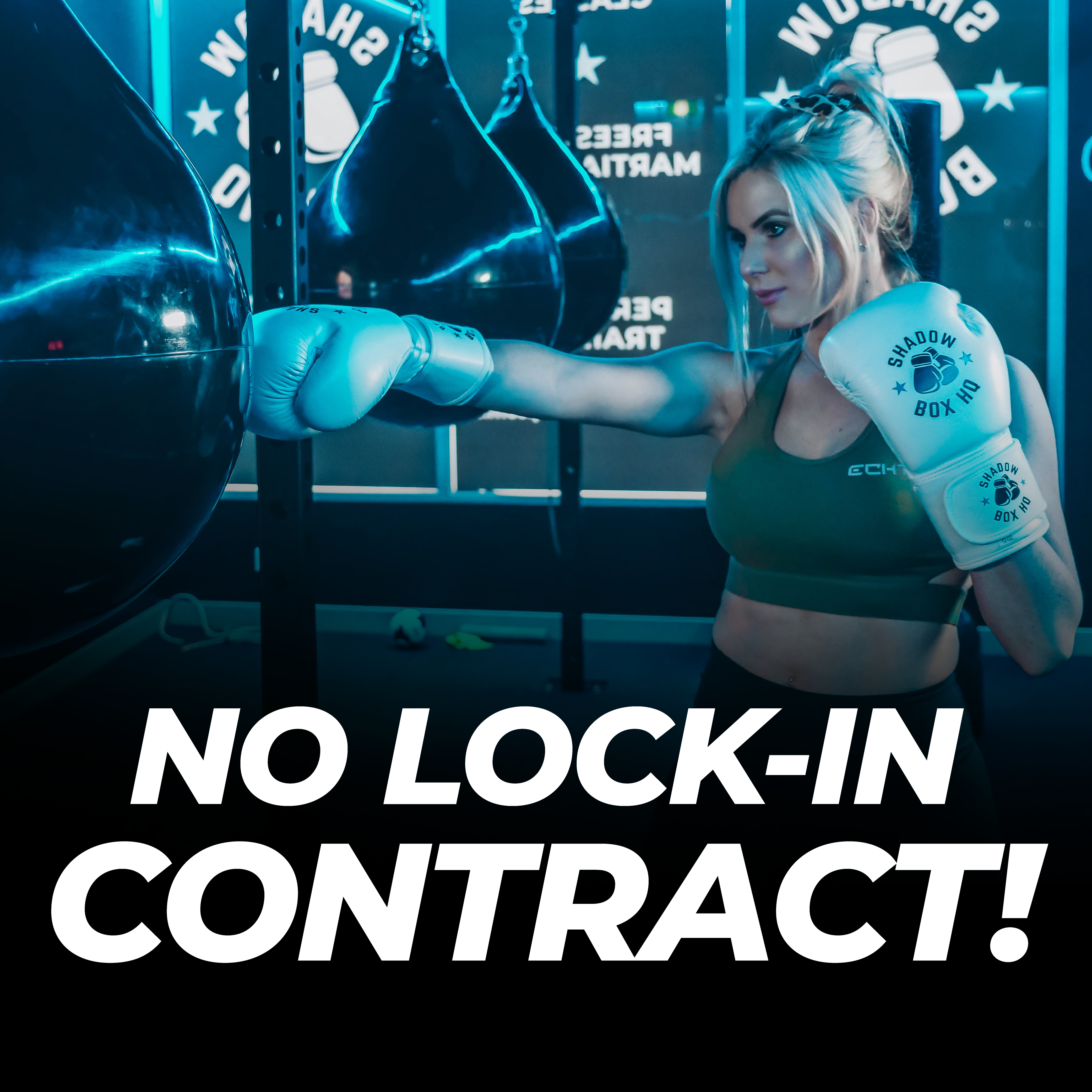 Shadowbox HQ and Bushidokai - No Contract