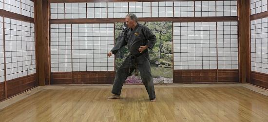 Bushidokai Self Paced Learning 1 - V2
