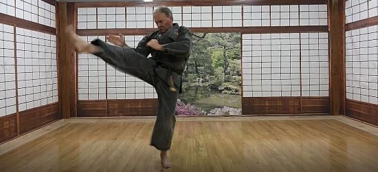 Bushidokai Self Paced Learning 4 - v2
